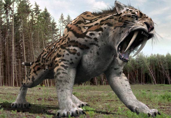 Saber Tooth Tiger Facts For Kids Best For School