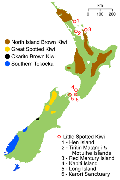 Kiwi Bird Habitat Map - Kiwi Bird Range