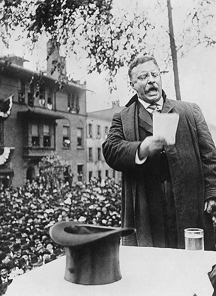 Theodore Roosevelt Campaign